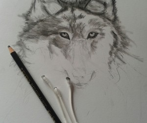 draw, wolf, and carboncino image