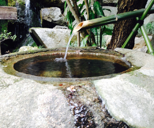 japanese garden, relaxing, and tokyo image