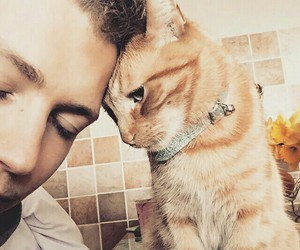 the vamps, james mcvey, and cat image