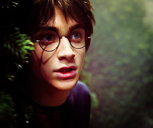 book, daniel radcliffe, and harry potter image