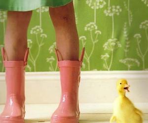 animals, botanical, and duckling image
