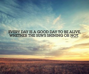 quotes, alive, and sun image