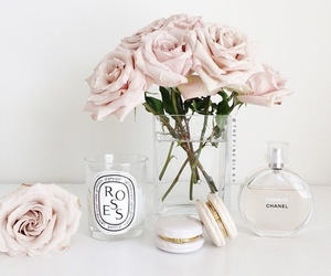 rose, chanel, and pink image