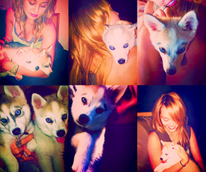 floyd and miley cyrus image