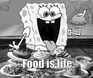 food, life, and spongebob image