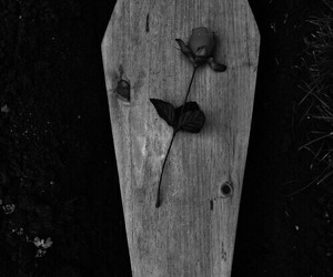 black, black and white, and coffin image