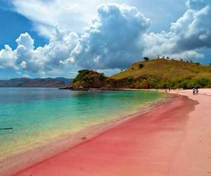 beach, pink, and indonesia image