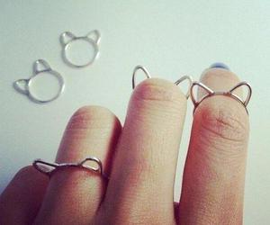 cat, ring, and rings image