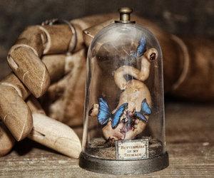 amor, arte, and mariposas image