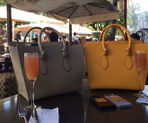 bag, luxury, and drink image