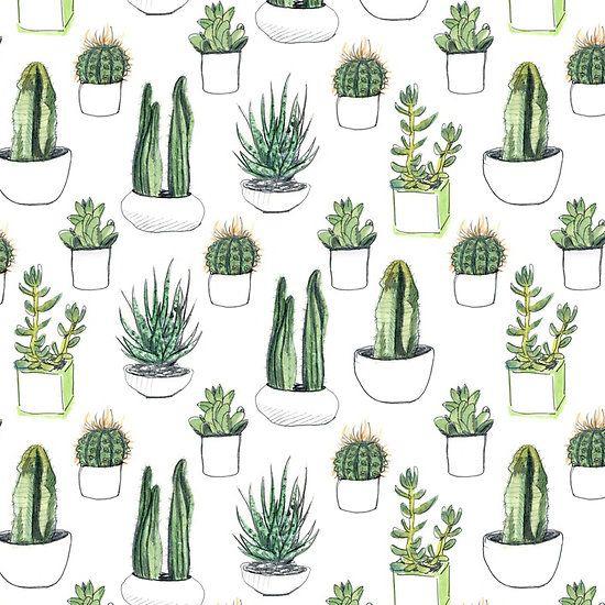 cacti, green, and wallpaper image