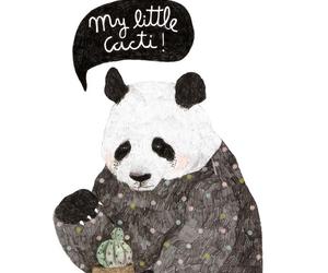 panda, cute, and cactus image