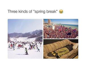 funny and spring image