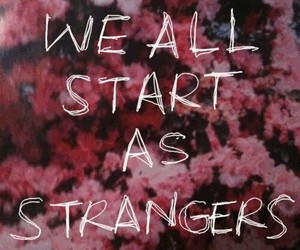 strangers, quotes, and flowers image
