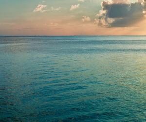sea, sky, and ocean image