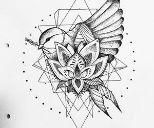 art, artist, and bird image