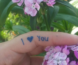 flowers, ily, and photography image