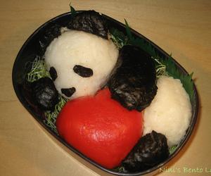 panda, bento, and kawaii image