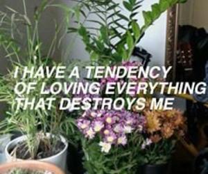 grunge, flowers, and sad image