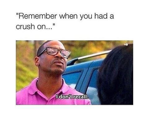 crush, funny, and quote image