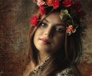 beauty, brown, and roses image