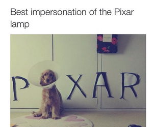 pixar, dog, and cute image