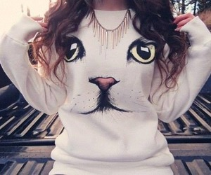fashion, cat, and sweater image