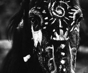 awesome, horse, and Origin image