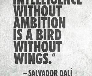 believe, bird, and motivationa image