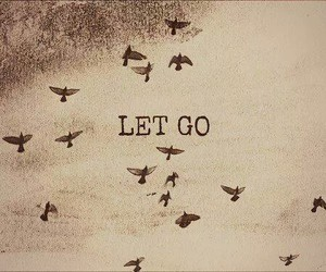 bird, let go, and quotes image