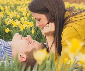 amoureux, spring, and yellow image