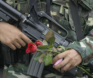 rose, gun, and peace image