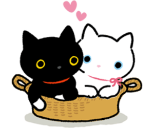 kawaii, kutusita nyanko, and cute image