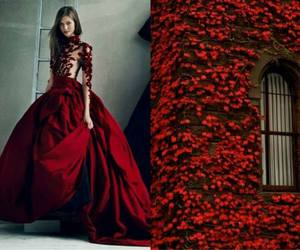 dress, red, and nature image