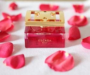 escada, perfume, and rose image