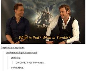 tumblr, chris hemsworth, and tom hiddleston image