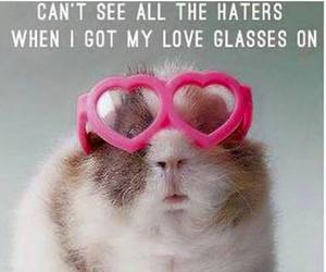 funny, haters, and love image