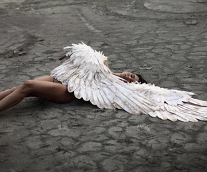 angel, fallen angel, and white swan image