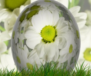 easter, free, and holiday image
