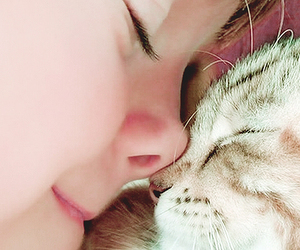 cat, cute, and child image