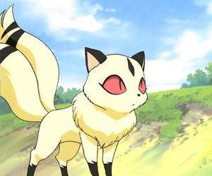 kirara, inuyasha, and anime image