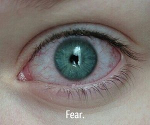 eye, fear, and green eyes image
