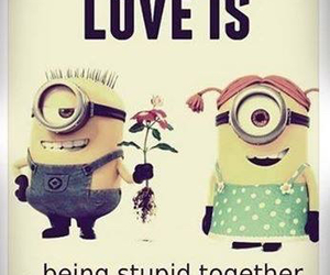 stupid, what love is, and boy image