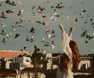 bird, girl, and free image