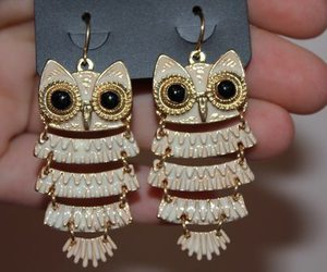 owl and earrings image