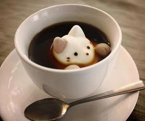 cat, cute, and coffee image
