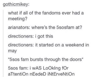 arianator, directioners, and 5sos fam image