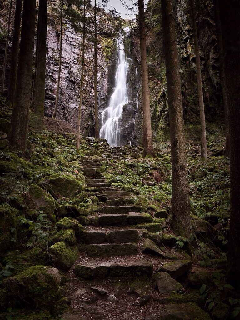 waterfall, forest, and germany image