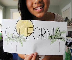 california, drawing, and palm trees image