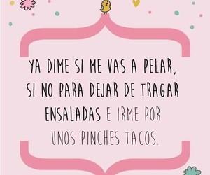 tacos, mujeres, and ensalada image